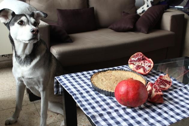 Dark Chocolate, Pomegranate and Almond Tart | Rivka's Kitchen